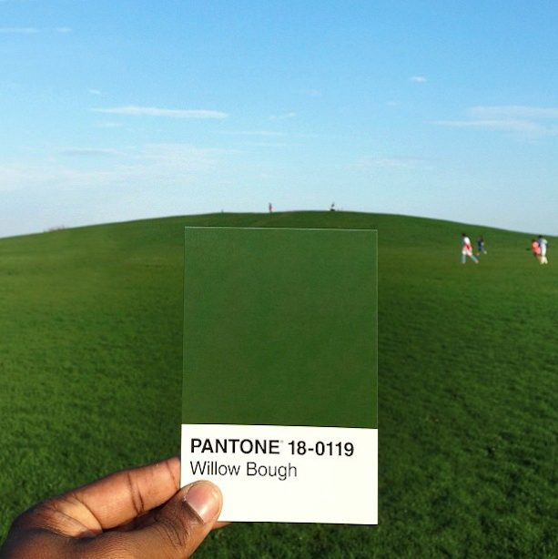 Pantone Project, by Paul Octavius