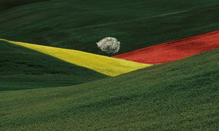 Franco Fontana: less is more